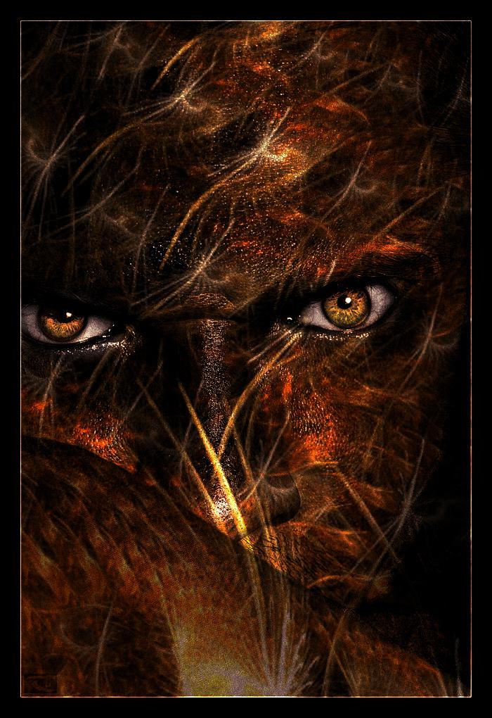Crainte dans Fantastique Anger_Burns_by_KnightFlyte96