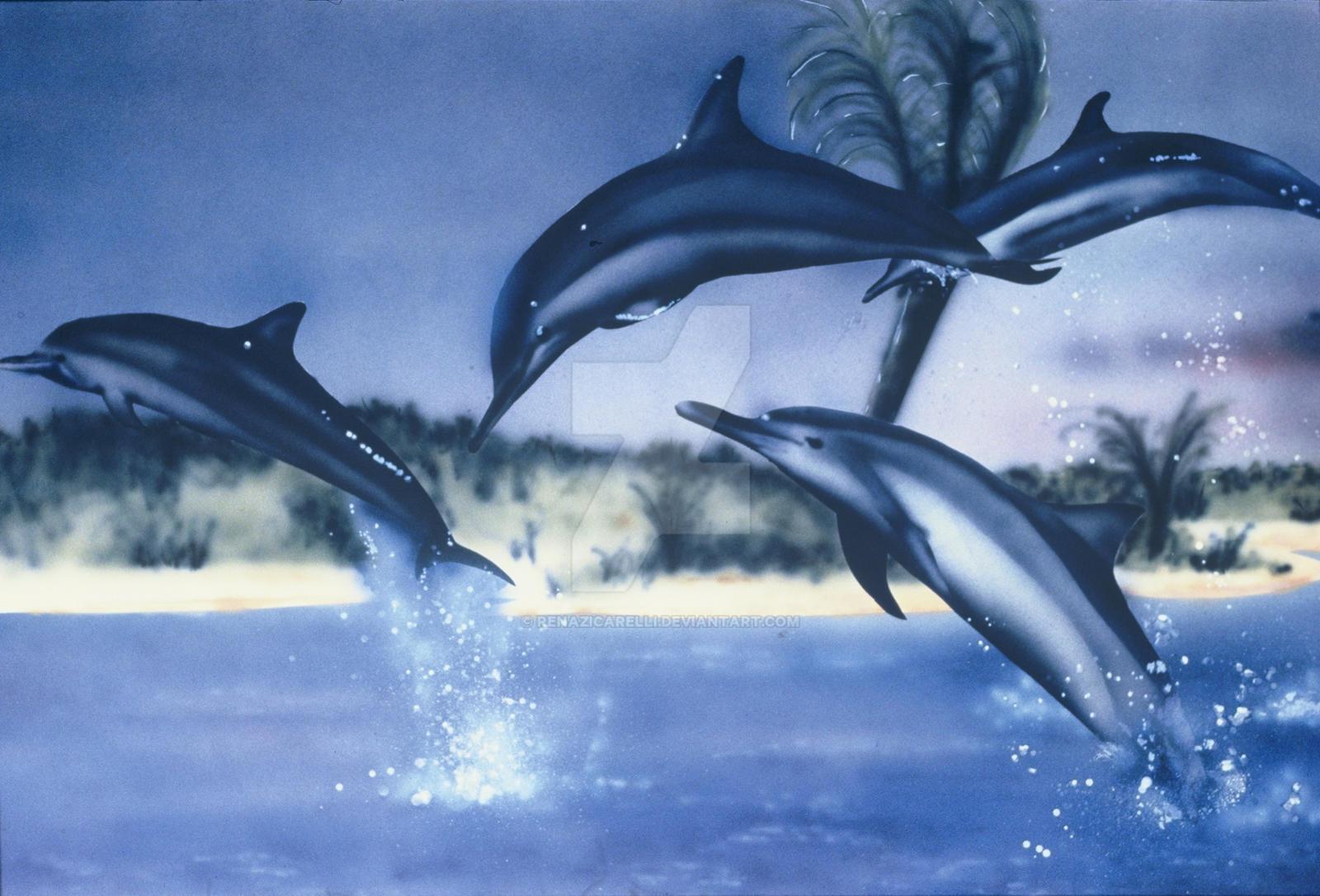 Miami's Dolphins by renazicarelli