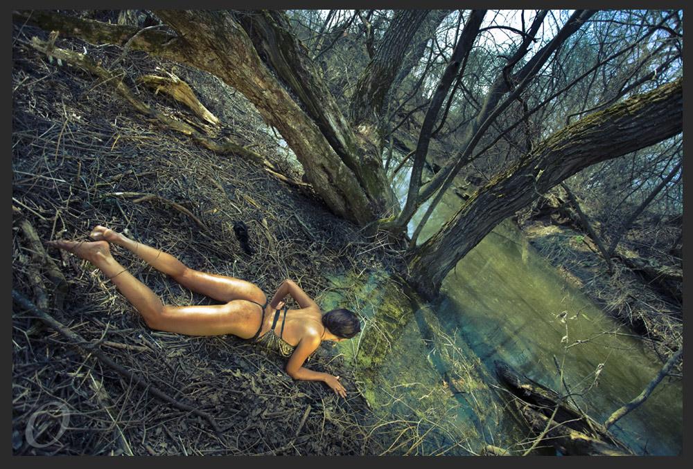 Savanna 03 by artwom77