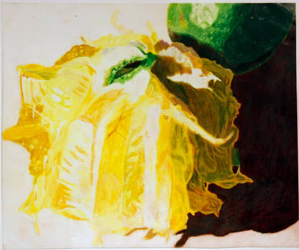lime inside out. by hert