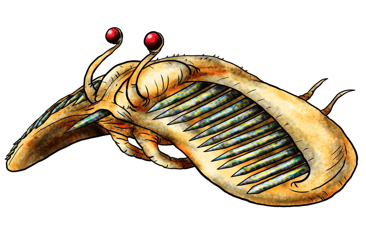 Visser: Lebtin Javelin Fish by Monster-Man-08