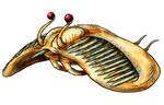 Visser: Lebtin Javelin Fish