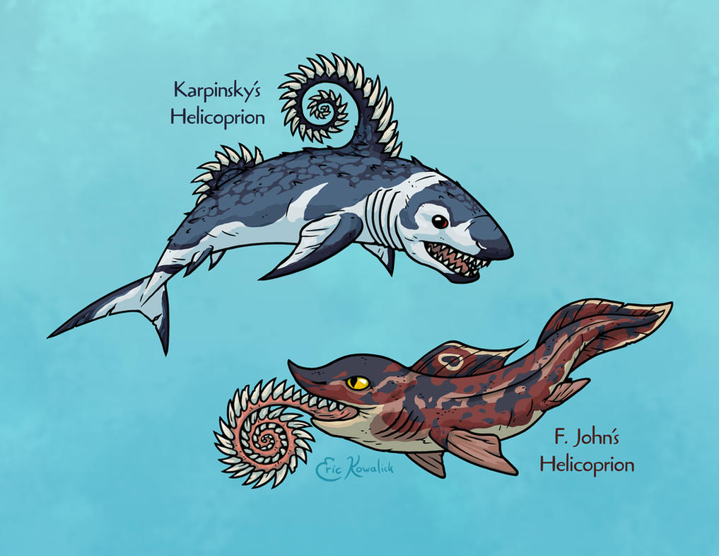 Science Ruined Helicoprion by Monster-Man-08 on DeviantArt