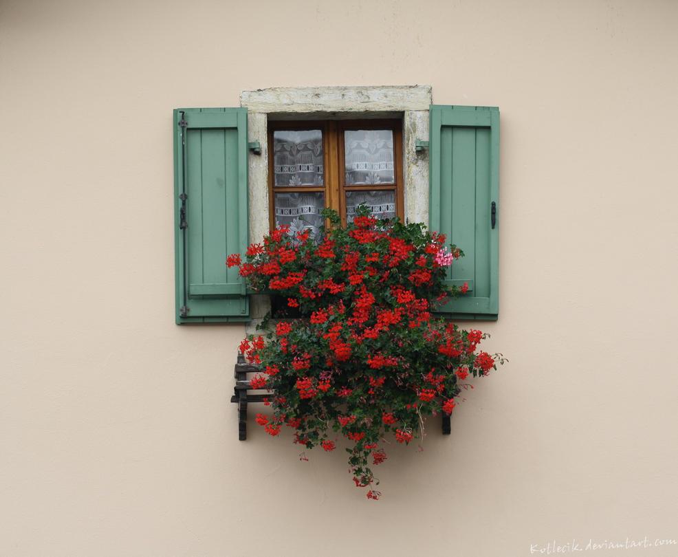 window by kotlecik