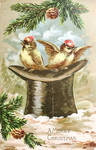Winter Birds with Top Hat