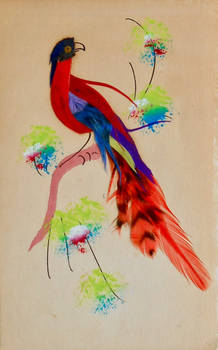 Real Feathers 1915 Novelty Post Card