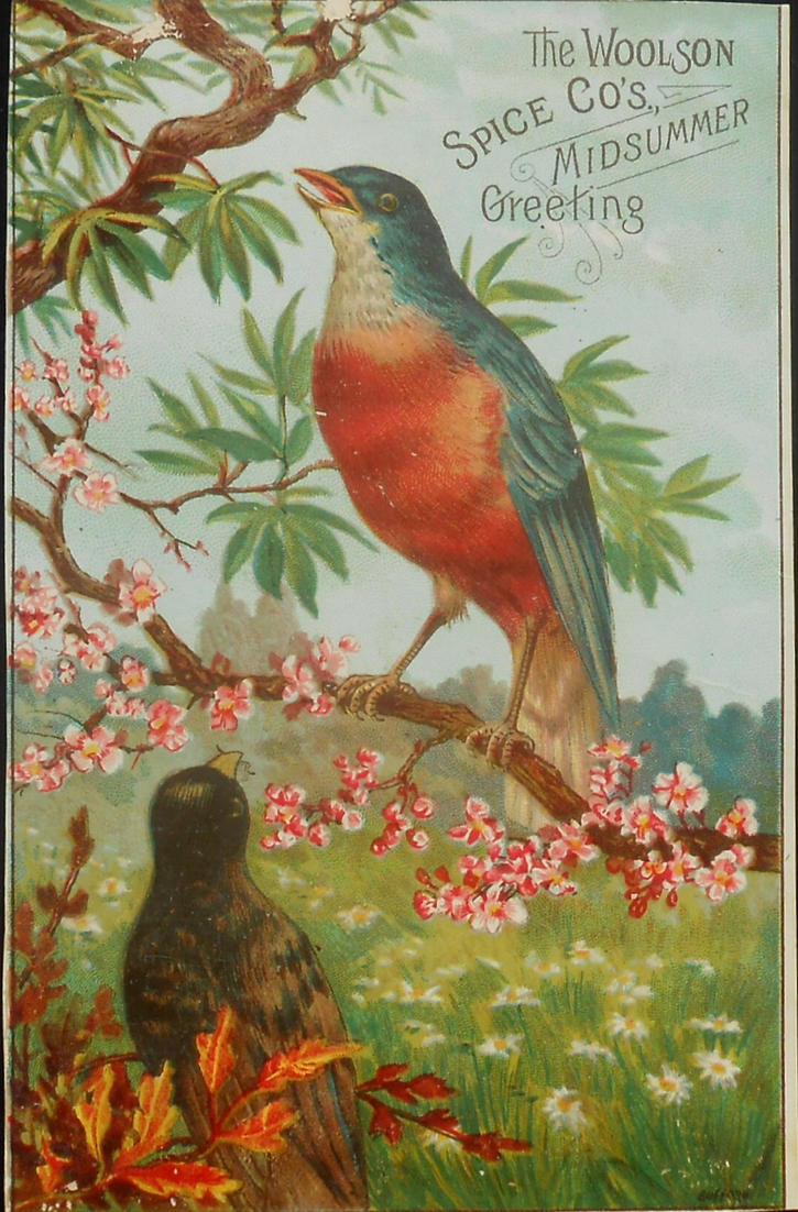 Robin And Bluebird Victorian Advertising Card By Yesterdays Paper