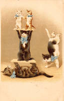 Cirque de Chat by Yesterdays-Paper