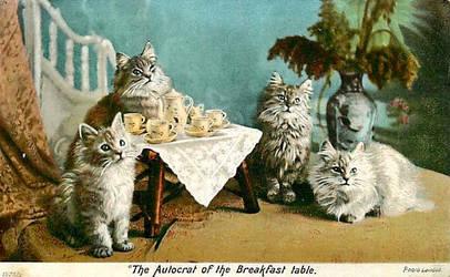 Kit-Tea Party