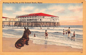 Vintage New England - Old Orchard Beach, Maine