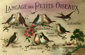 Langage Des Petits Oiseaux by Yesterdays-Paper