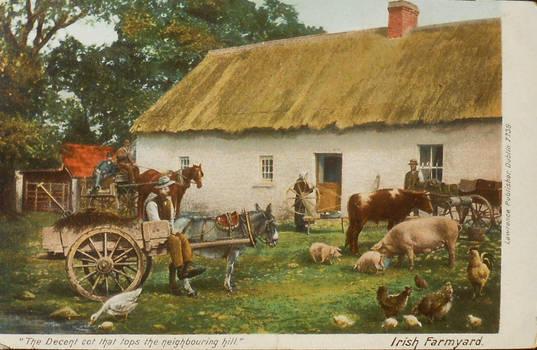 Scene From An Irish Farmyard