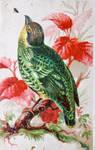 Victorian Advertising - Oiseau Vert
