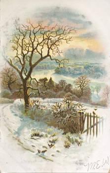 Winter's Peace