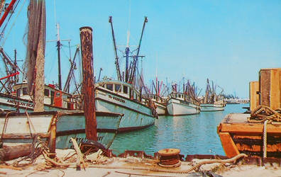 Vintage Florida - Shrimp Boats, Key West by Yesterdays-Paper