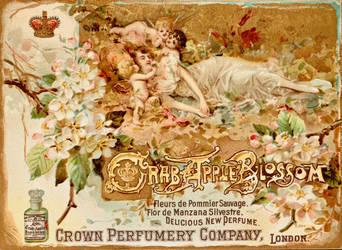 Victorian Advertising - Crab Apple Blossom