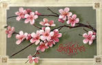 Plum Blossom Best Wishes