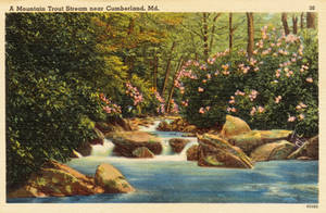 Vintage Maryland - Mountain Trout Stream by Yesterdays-Paper