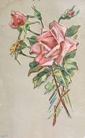 Sissy's Country Rose by Yesterdays-Paper