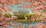 Vintage Washington DC - Lincoln Memorial in Spring