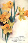 Daffodils That Come Before The Swallow Dares by Yesterdays-Paper