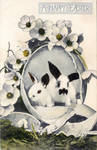 Black + White Bunnies by Yesterdays-Paper