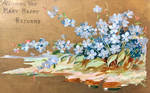 Forget-Me-Nots for Many Happy Returns
