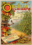 Victorian Advertising - Guano