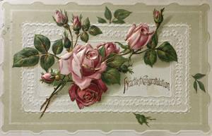 Dusty Rose Romance