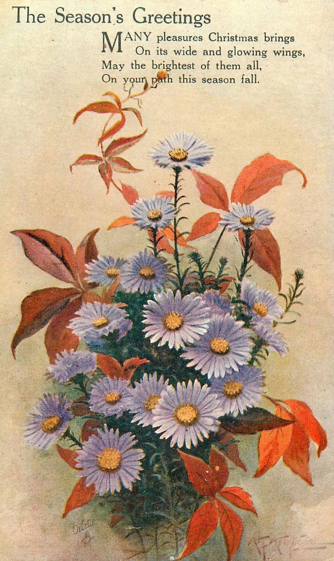 Sweet Flowers Bring Greetings Of The Season By Yesterdays Paper On