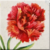 Red Carnation Icon
