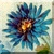 Cornflower Icon by Yesterdays-Paper
