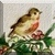 Holly Bird Icon