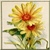 Vintage Yellow Daisy Icon