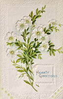 Hearty Greetings In White