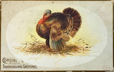 Cordial Tom Turkey by Yesterdays-Paper