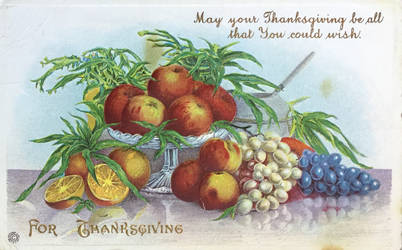 May Your Thanksgiving Be All That You Could Wish