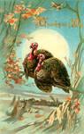 Lovebirds Under The Moonlight by Yesterdays-Paper