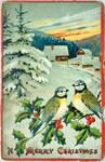 Vintage Christmas - A Bird's Eye View