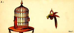 Optical Illusion Card - Parrot and Birdcage