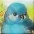 Fluffy Grump Face Bluebird Icon by Yesterdays-Paper