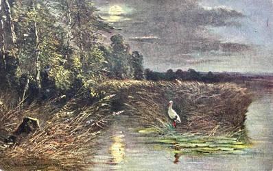 Night Scene Postcards - Moonlit Marsh by Yesterdays-Paper