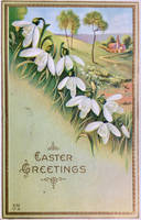 Snowdrops - A Promise of Hope by Yesterdays-Paper