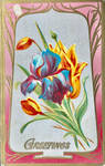 Cheerful Iris and Tulips by Yesterdays-Paper