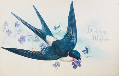 A Birthday Wish on Swift Blue Wings by Yesterdays-Paper
