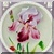 Vintage Bearded Iris Icon by Yesterdays-Paper