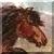 Shetland Pony Galloping Right Icon
