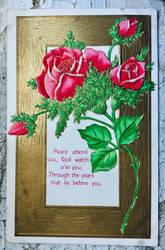 Mother Penn's Roses
