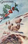 Seasons Greetings From The Herd
