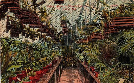 Vintage Missouri - Greenhouse, Shaw's Garden